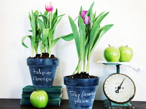 Easter (and Passover) Decorating Ideas